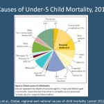 Webinar: Community-Based Approaches to Improve Maternal-Child Health